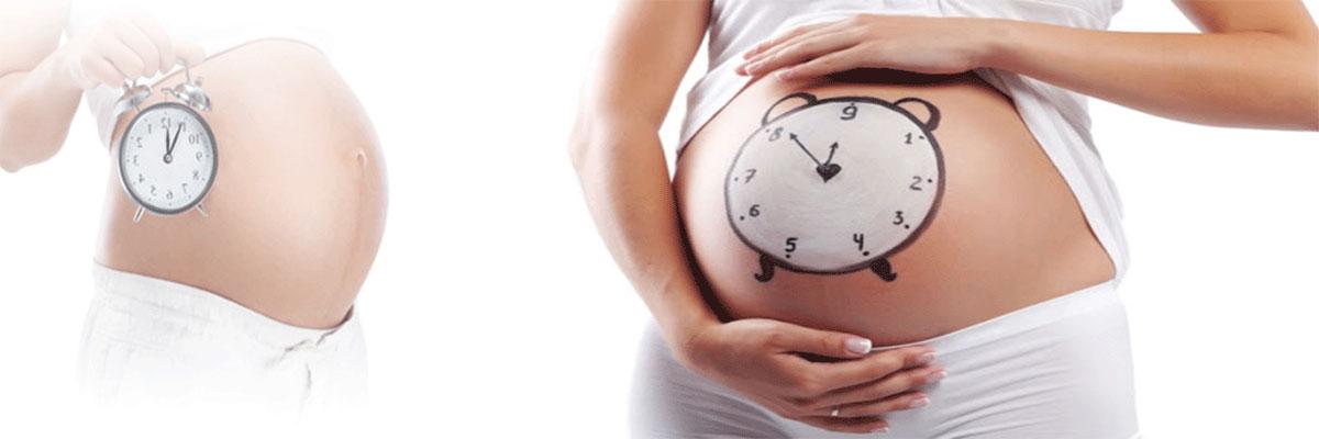 الحمل المديد