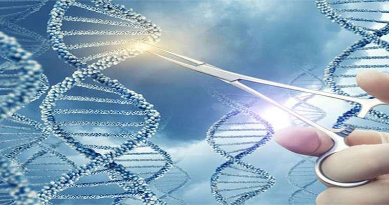 تقنية الخلايا الجذعية
