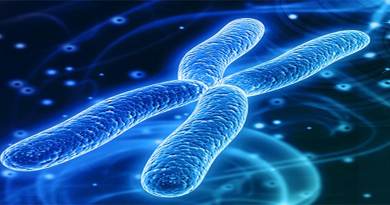 تقنية تشخيص الخلل الكروموسومي (PGS)